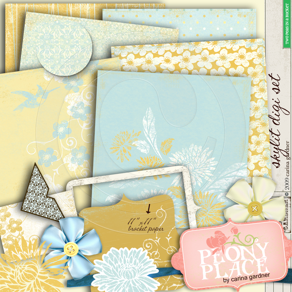 carinagardner_2ps_peonyplace_skylitset1prev