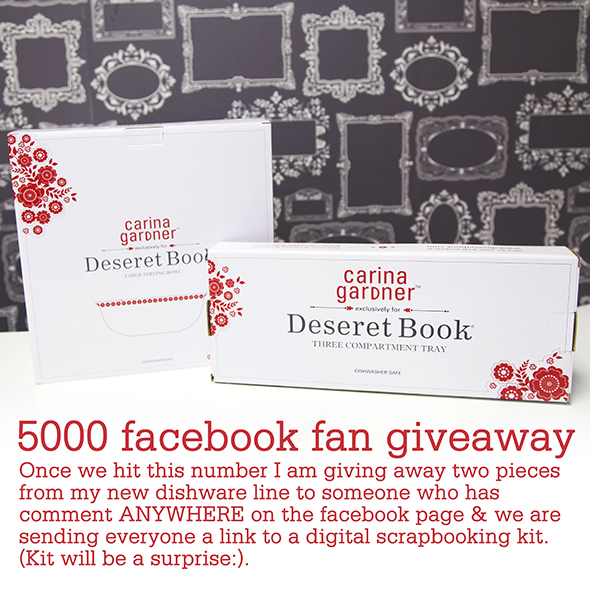 FACEBOOK FAN PAGE GIVEAWAY RULES